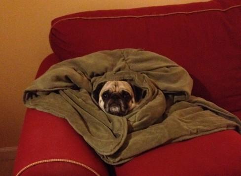 Stay Warm, my friends!