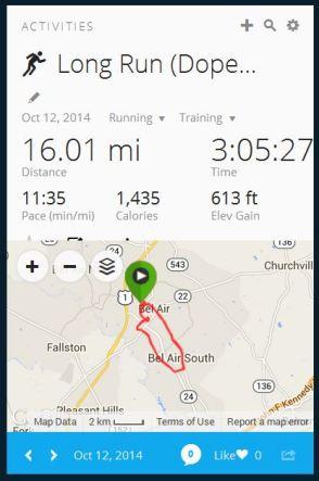 Week 15 Long Run