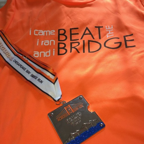 my rip-off (but pretty) T-shirt and finisher's medal