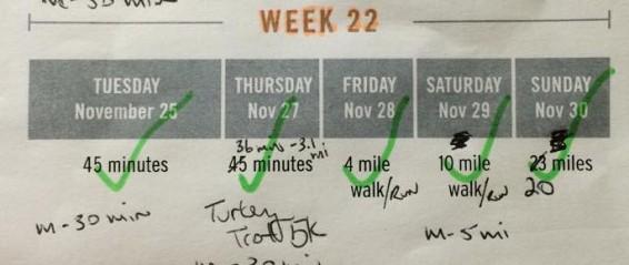 Week 22